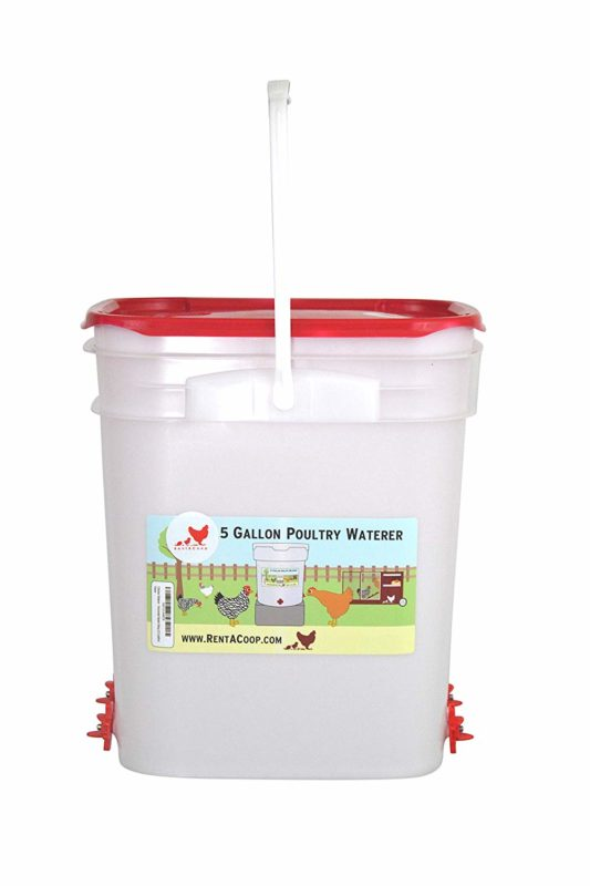 RentACoop 5-Gallon Chicken Waterer
