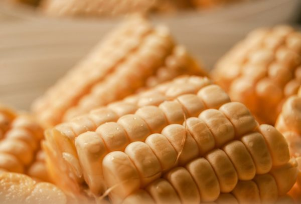 Yellow corn from a canning garden