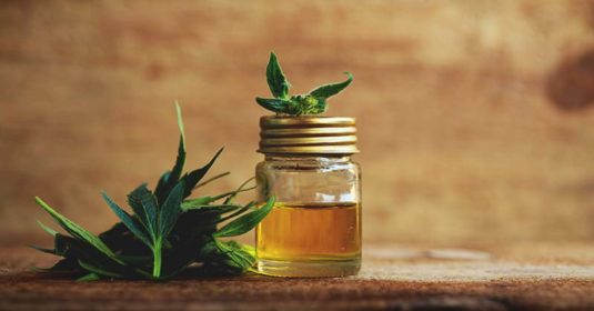 14 CBD Oil Benefits Which Could Make Your Life Easier