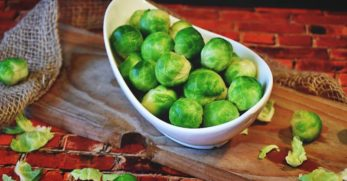 Growing Brussel Sprouts: A Complete Guide to Plant, Grow and Harvest Brussel Sprouts